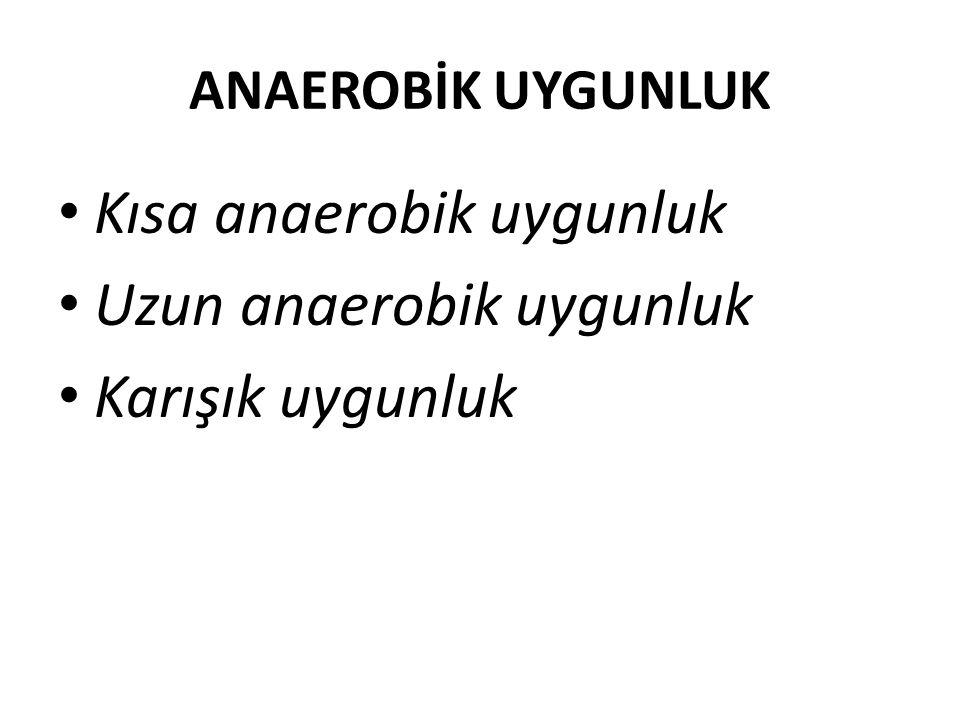 ANAEROBİK UYGUNLUK Kısa anaerobik uygunluk Uzun anaerobik uygunluk Karışık uygunluk