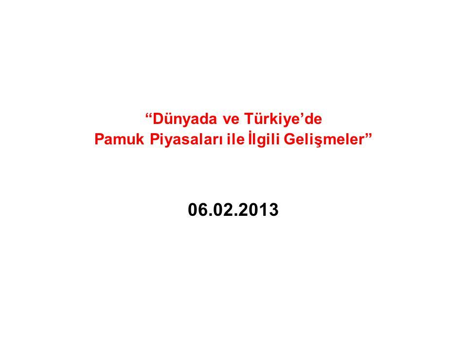 """""""Dünyada ve Türkiye'de Pamuk Piyasaları ile İlgili Gelişmeler"""" 06.02.2013"""