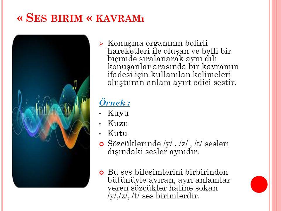 « S ES BIRIM « KAVRAMı  Konuşma organının belirli hareketleri ile oluşan ve belli bir biçimde sıralanarak aynı dili konuşanlar arasında bir kavramın