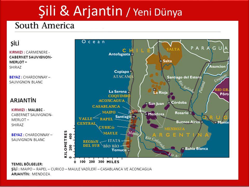 Şili & Arjantin / Yeni Dünya KIRMIZI : CARMENERE - CABERNET SAUVIGNON- MERLOT – SHIRAZ BEYAZ : CHARDONNAY – SAUVIGNON BLANC ŞİLİ KIRMIZI : MALBEC - CA