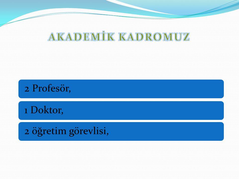 2 Profesör, 1 Doktor, 2 öğretim görevlisi,