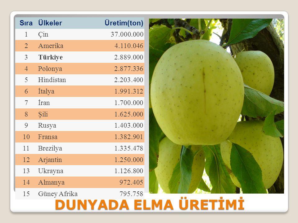 Elmanın Faydaları Günde bir elma yemek ömre 2 yıl katıyor Günde bir elma yiyen kişinin evine doktor girmez Her gün bir elma, kalbi koruyor.