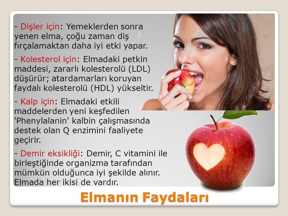 Elmanın Faydaları - Dişler için: Yemeklerden sonra yenen elma, çoğu zaman diş fırçalamaktan daha iyi etki yapar.