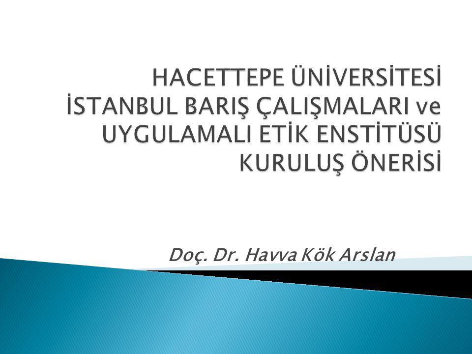  Kurulması düşünülen enstitü, İngilizce ve Türkçe dillerinde eğitim verecek olup, bünyesindeki uluslararası programlar, ağırlıklı olarak Türkiye dışından gelecek yabancı öğrenci ve konularında uzman konuk yabancı öğretim üyelerince sürdürülecektir.
