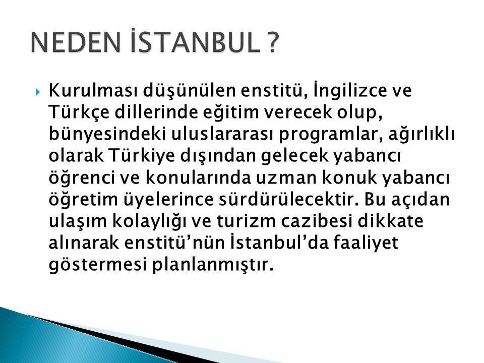  Kurulması düşünülen enstitü, İngilizce ve Türkçe dillerinde eğitim verecek olup, bünyesindeki uluslararası programlar, ağırlıklı olarak Türkiye dışı