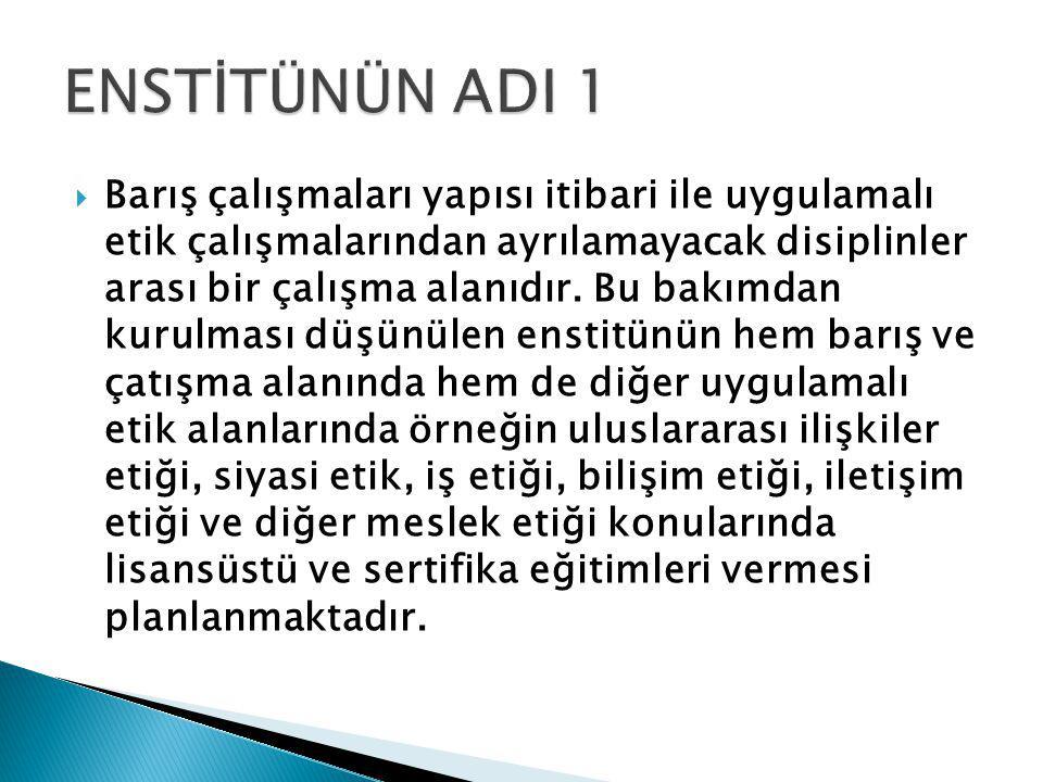  Kurulduğu takdirde HÜ İstanbul Barış ve Uygulamalı Etik Enstitüsü, Türkiye'nin Balkanlar, Kafkasya, Orta Asya ve Orta Doğu'da kurmaya çalıştığı barış ve işbirliği temelli ilişkilerin geliştirilmesine katkı sağlayacaktır.