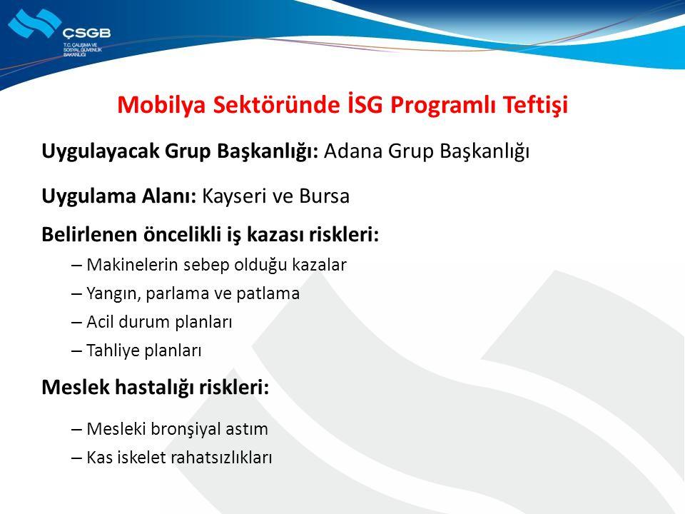 Mobilya Sektöründe İSG Programlı Teftişi Uygulayacak Grup Başkanlığı: Adana Grup Başkanlığı Uygulama Alanı: Kayseri ve Bursa Belirlenen öncelikli iş k