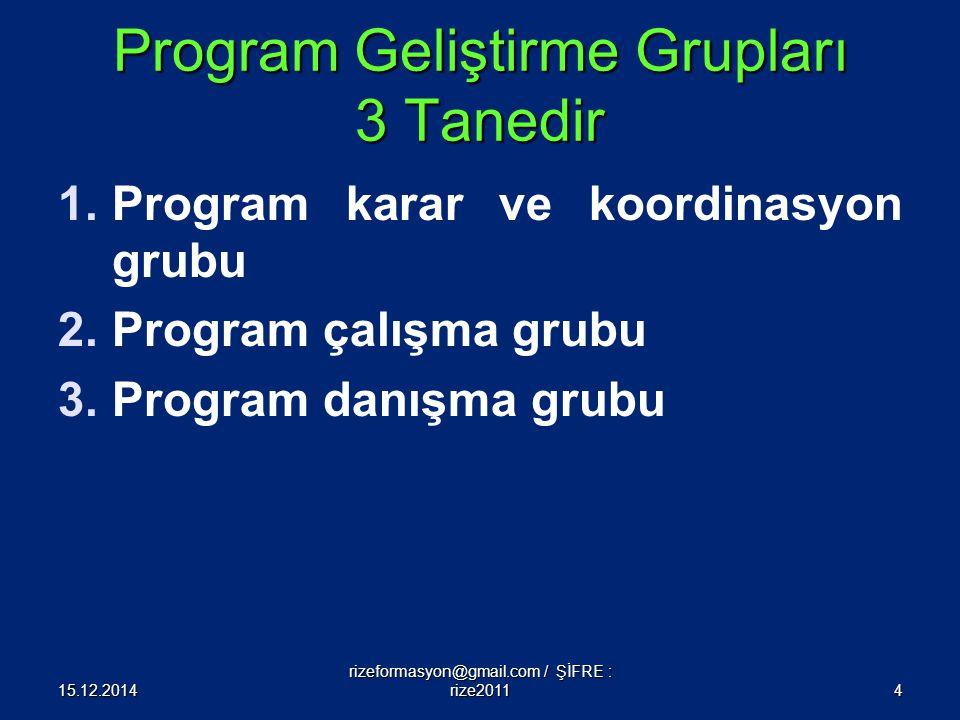 Program Geliştirme Grupları 3 Tanedir 1.Program karar ve koordinasyon grubu 2.Program çalışma grubu 3.Program danışma grubu 15.12.20144 rizeformasyon@