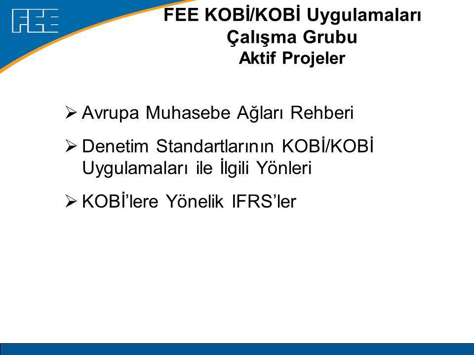 EFRAG  2001'de kurulmuştur  Özel sektör kuruluşu  Kurucu ortaklar: –UNICE ve ERT Business (hazırlayıcılar) –FEE (muhasebeciler) –Bankacılık Kuruluşları (FBE, ESBG, ECBG) –EFFAS (finansal analistler) –CEA (sigortacılar) –FESE (borsalar) –UEAPME/EFAA (KOBİ'ler)