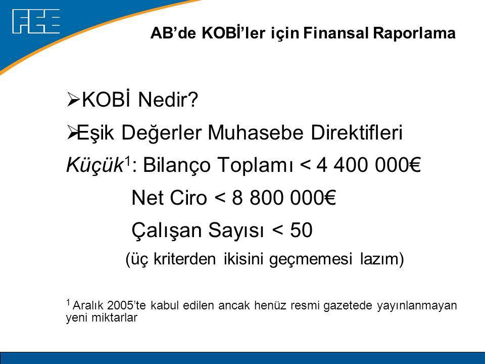 AB'de KOBİ'ler için Finansal Raporlama Orta 1 : Bilanço Toplamı < 17 500 000€ Net Ciro < 35 000 000€ Çalışan Sayısı < 250 (üç kriterden ikisini geçmemesi lazım) 1 Aralık 2005'te kabul edilen ancak henüz resmi gazetede yayınlanmayan yeni miktarlar