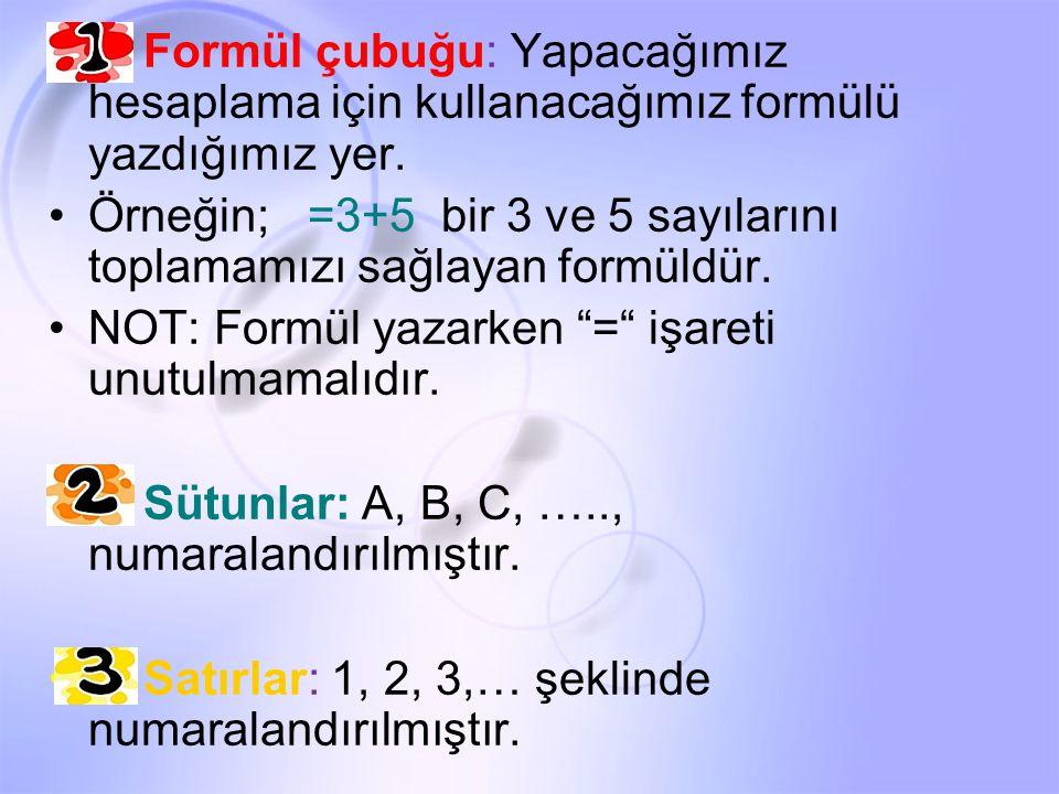 1- Formül çubuğu: Yapacağımız hesaplama için kullanacağımız formülü yazdığımız yer.