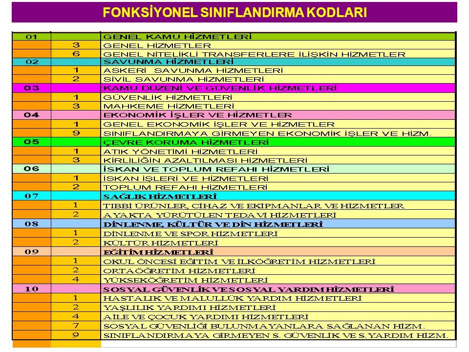 FONKSİYONEL SINIFLANDIRMA KODLARI
