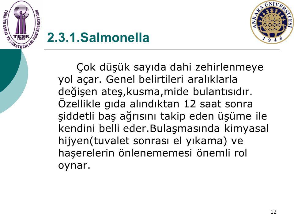 12 2.3.1.Salmonella Çok düşük sayıda dahi zehirlenmeye yol açar. Genel belirtileri aralıklarla değişen ateş,kusma,mide bulantısıdır. Özellikle gıda al