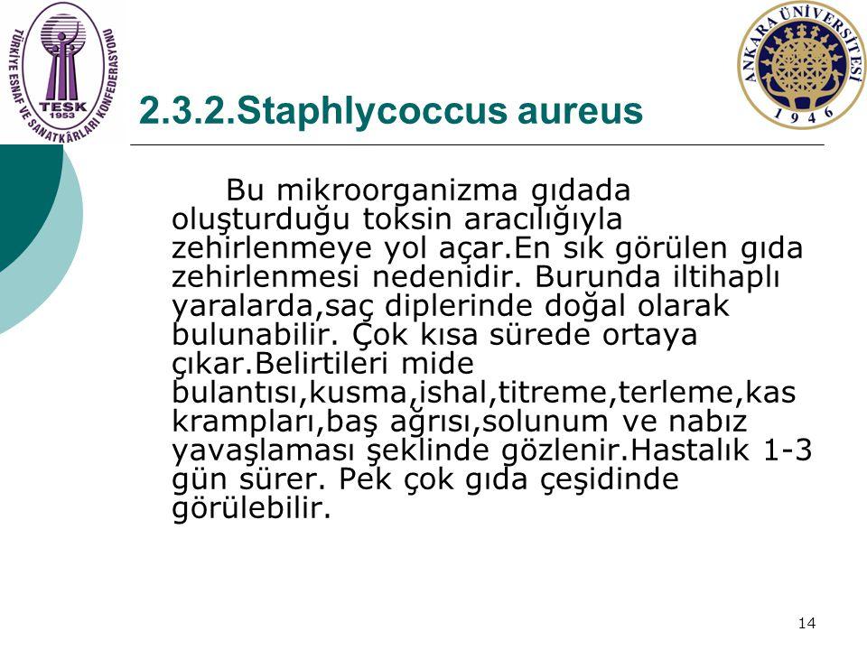 14 2.3.2.Staphlycoccus aureus Bu mikroorganizma gıdada oluşturduğu toksin aracılığıyla zehirlenmeye yol açar.En sık görülen gıda zehirlenmesi nedenidi