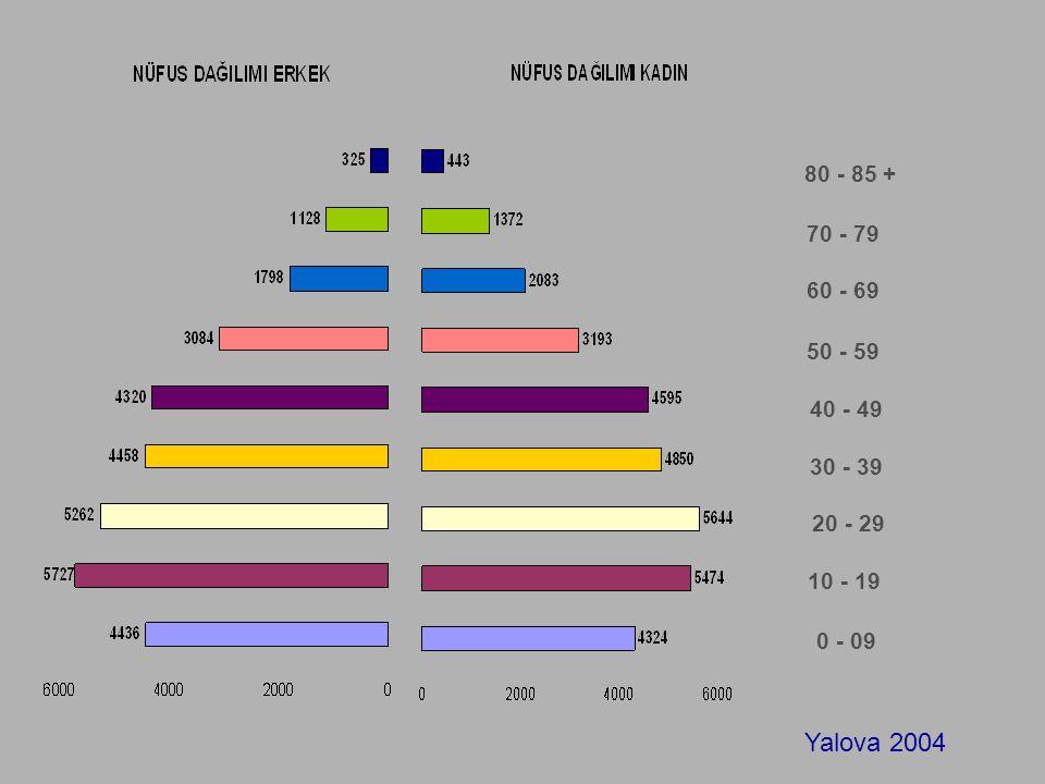 80 - 85 + 60 - 69 50 - 59 70 - 79 40 - 49 30 - 39 20 - 29 10 - 19 0 - 09 Yalova 2004