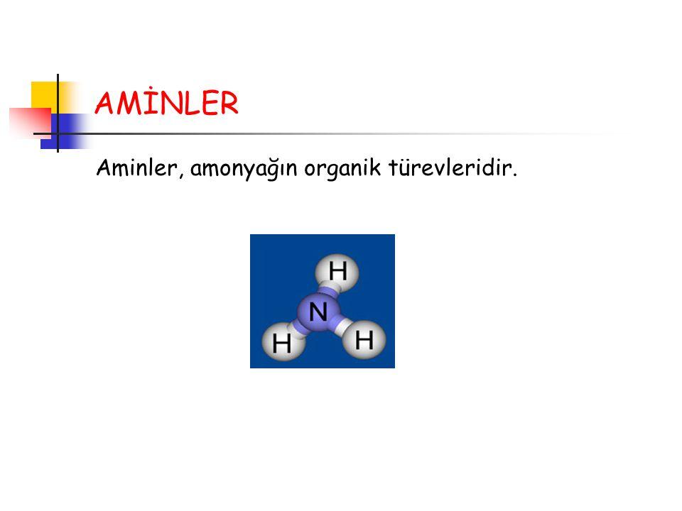 AMİNLER Aminler, amonyağın organik türevleridir.