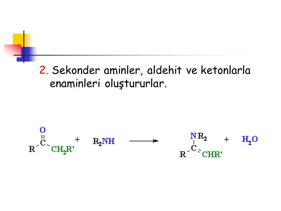 2. Sekonder aminler, aldehit ve ketonlarla enaminleri oluştururlar.