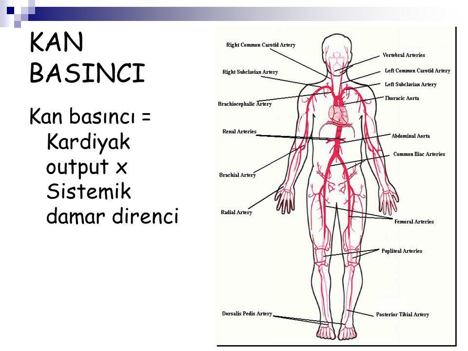 KAN BASINCI Kan basıncı = Kardiyak output x Sistemik damar direnci