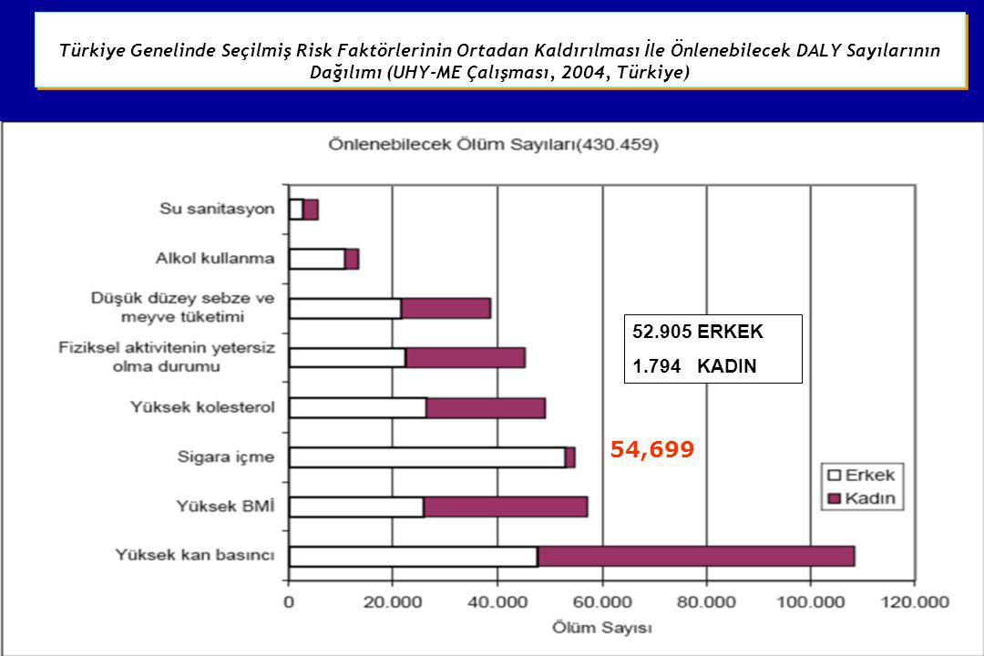 54,699 Türkiye Genelinde Seçilmiş Risk Faktörlerinin Ortadan Kaldırılması İle Önlenebilecek DALY Sayılarının Dağılımı (UHY-ME Çalışması, 2004, Türkiye
