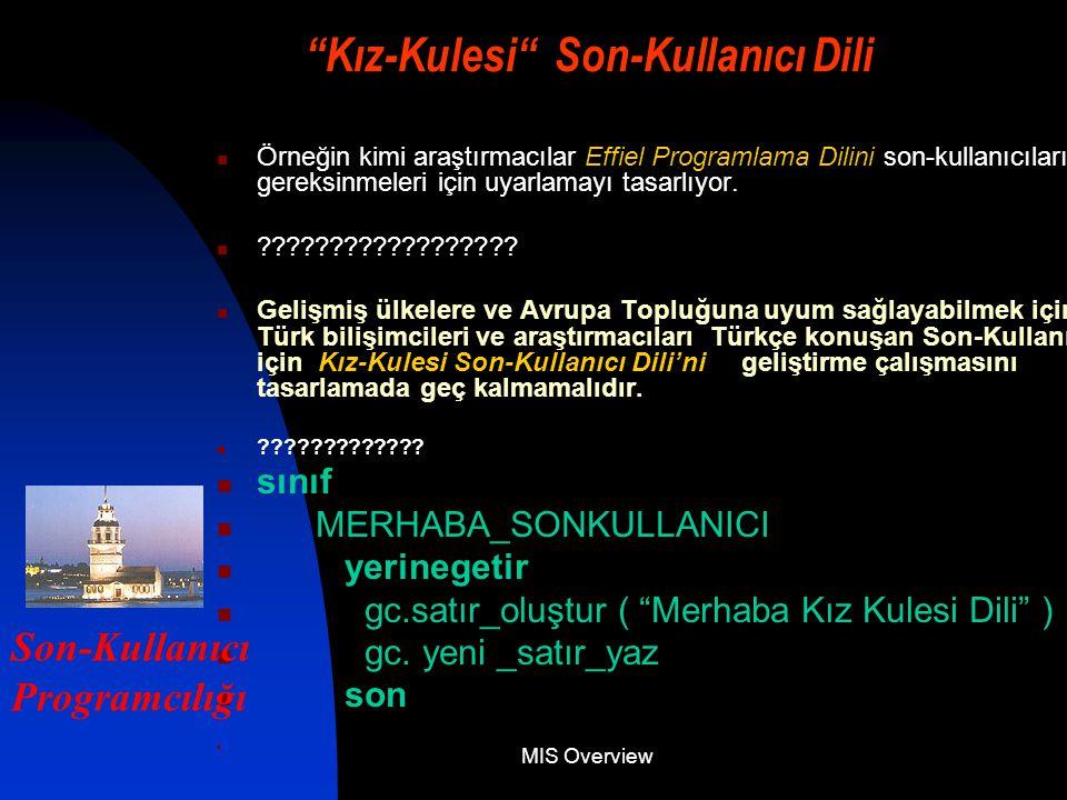 MIS Overview Kız-Kulesi Son-Kullanıcı Dili Örneğin kimi araştırmacılar Effiel Programlama Dilini son-kullanıcıların gereksinmeleri için uyarlamayı tasarlıyor.