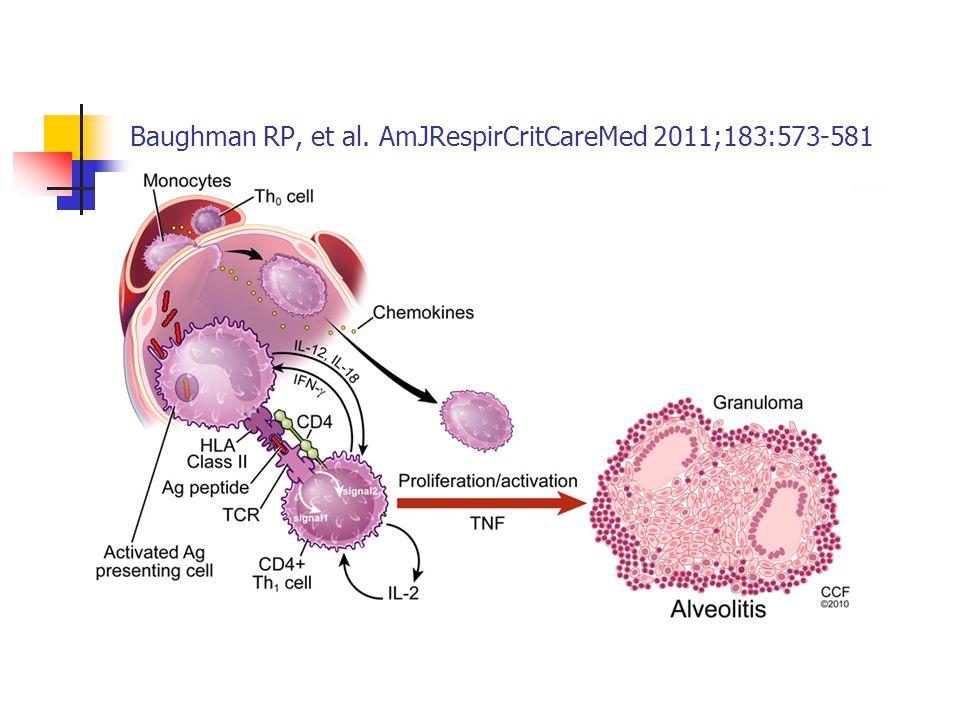 Son zamanlarda granülom oluşumunda CD4+ Th17 hücrelerin rolü tartışılmaktadır.