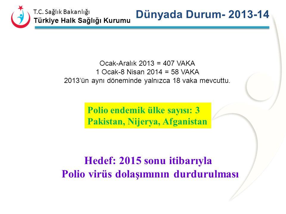 T.C. Sağlık Bakanlığı Türkiye Halk Sağlığı Kurumu DÜNYADA DURUM Çocuk Felcinden arındırılmış bölge olarak sertifikalandırıldı DSÖ Avrupa bölgesi 2002'