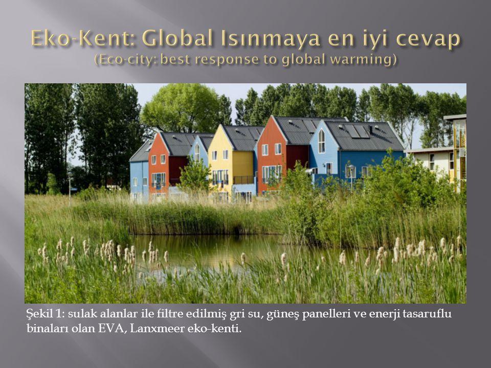 Şekil 1: sulak alanlar ile filtre edilmiş gri su, güneş panelleri ve enerji tasaruflu binaları olan EVA, Lanxmeer eko-kenti.