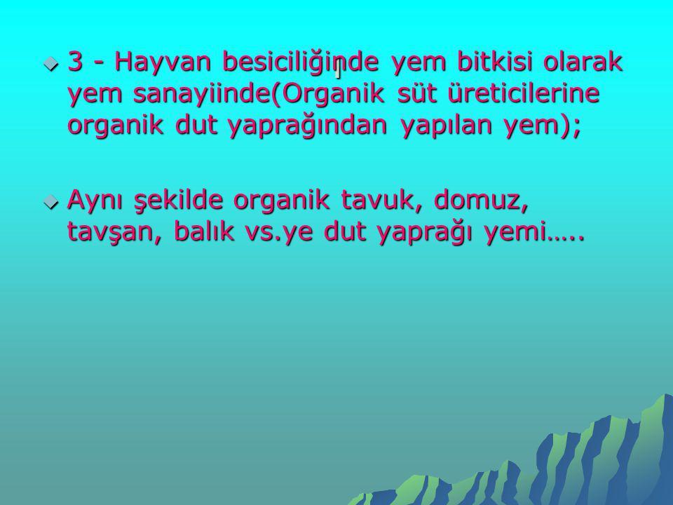 ı  3 - Hayvan besiciliğinde yem bitkisi olarak yem sanayiinde(Organik süt üreticilerine organik dut yaprağından yapılan yem);  Aynı şekilde organik