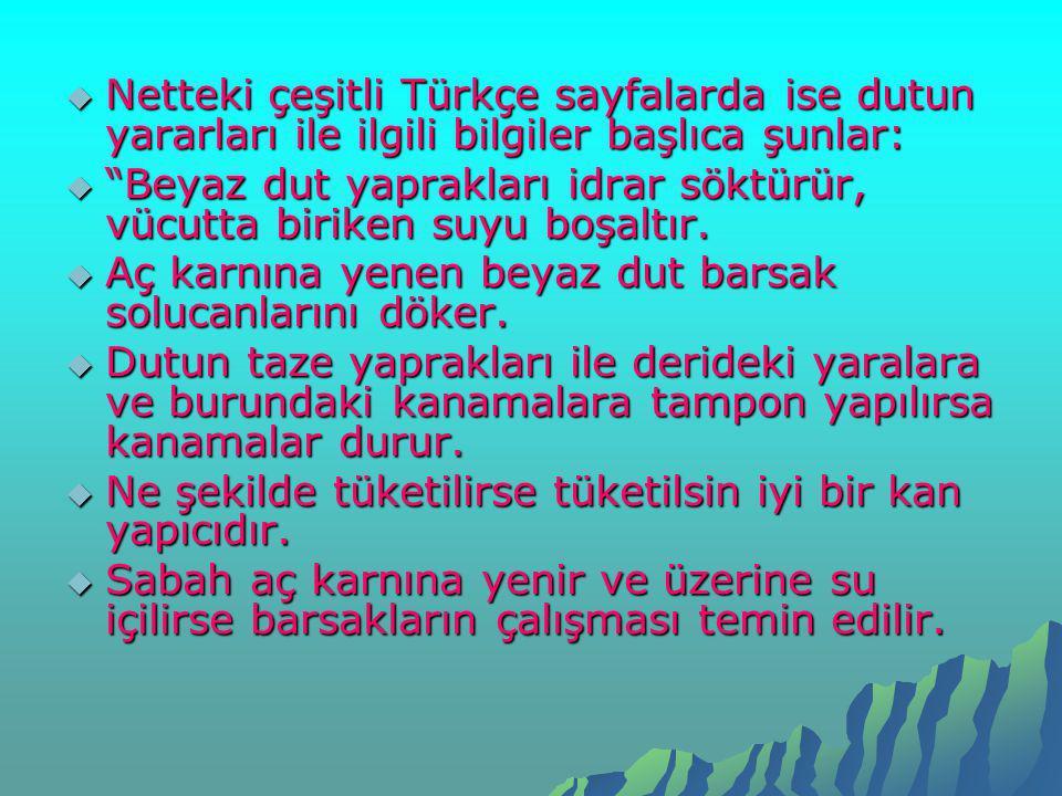 """ Netteki çeşitli Türkçe sayfalarda ise dutun yararları ile ilgili bilgiler başlıca şunlar:  """"Beyaz dut yaprakları idrar söktürür, vücutta biriken su"""