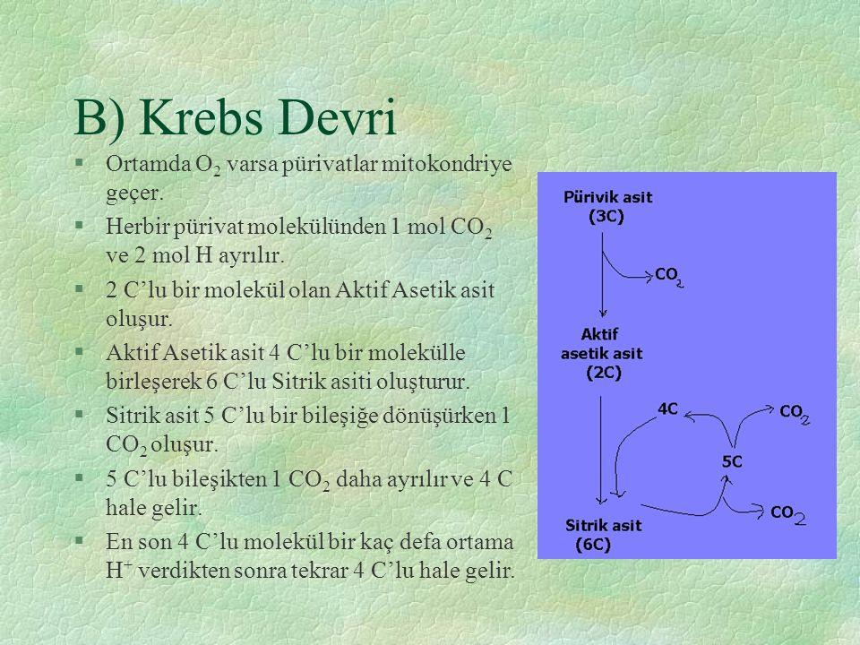 B) Krebs Devri §Ortamda O 2 varsa pürivatlar mitokondriye geçer. §Herbir pürivat molekülünden 1 mol CO 2 ve 2 mol H ayrılır. §2 C'lu bir molekül olan