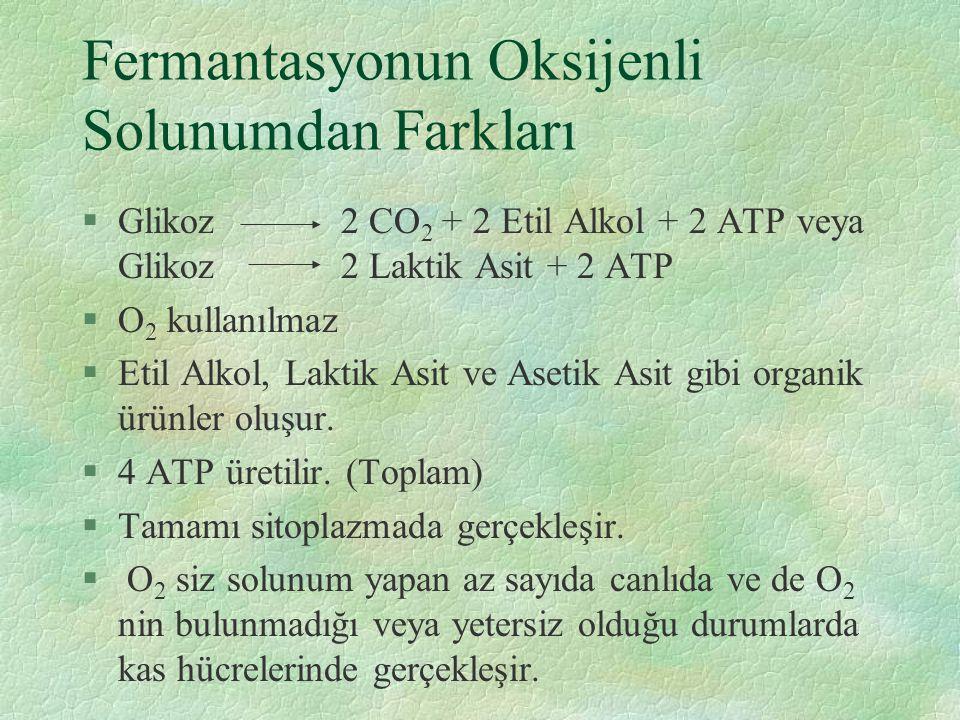 Fermantasyonun Oksijenli Solunumdan Farkları §Glikoz 2 CO 2 + 2 Etil Alkol + 2 ATP veya Glikoz 2 Laktik Asit + 2 ATP §O 2 kullanılmaz §Etil Alkol, Laktik Asit ve Asetik Asit gibi organik ürünler oluşur.
