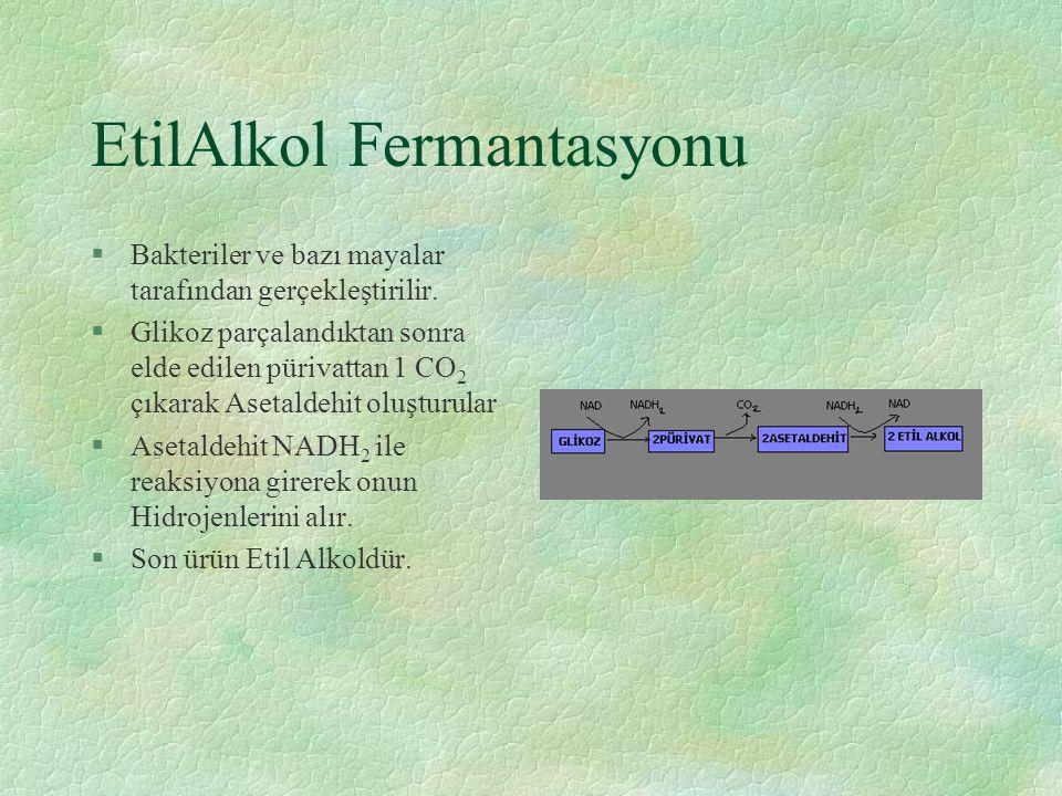 EtilAlkol Fermantasyonu §Bakteriler ve bazı mayalar tarafından gerçekleştirilir. §Glikoz parçalandıktan sonra elde edilen pürivattan 1 CO 2 çıkarak As