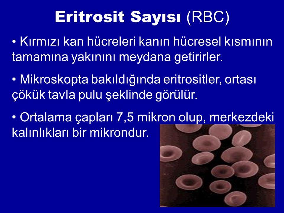 Eritrosit Sayısı (RBC) Kırmızı kan hücreleri kanın hücresel kısmının tamamına yakınını meydana getirirler. Mikroskopta bakıldığında eritrositler, orta