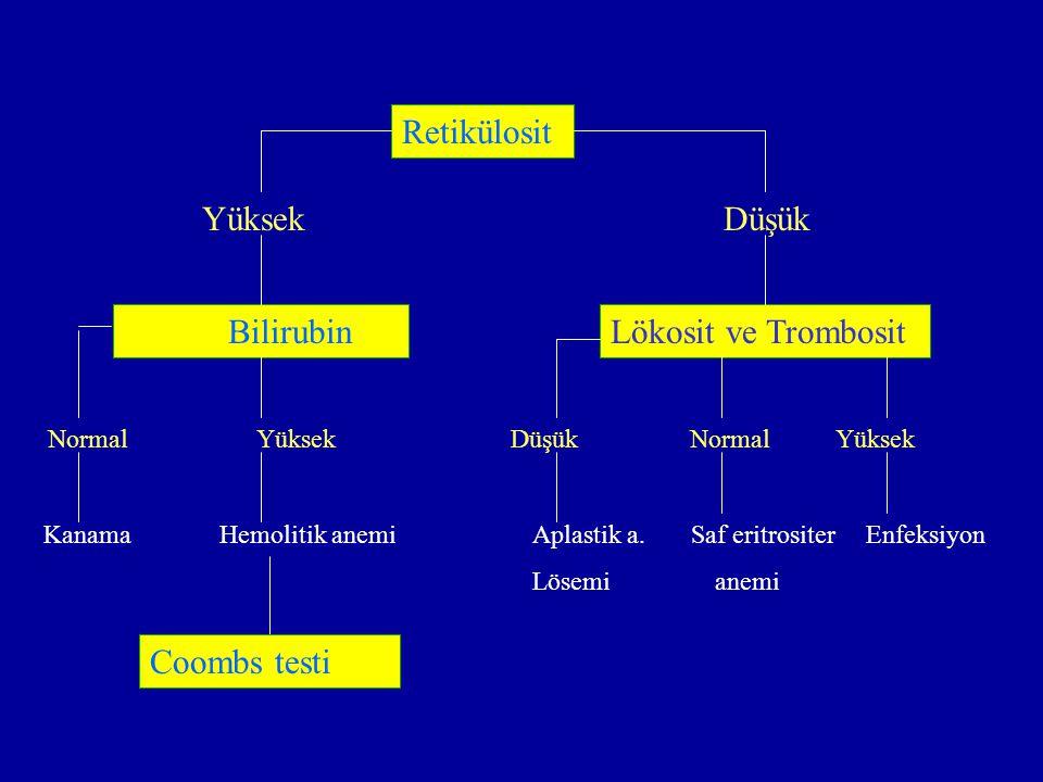 YüksekDüşük BilirubinLökosit ve Trombosit NormalYüksek Düşük Normal Yüksek Retikülosit KanamaHemolitik anemiAplastik a. Saf eritrositer Enfeksiyon Lös