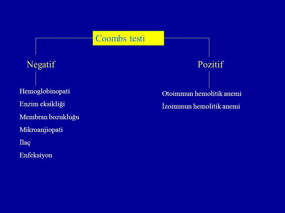 NegatifPozitif Hemoglobinopati Enzim eksikliği Membran bozukluğu Mikroanjiopati İlaç Enfeksiyon Otoimmun hemolitik anemi İzoimmun hemolitik anemi