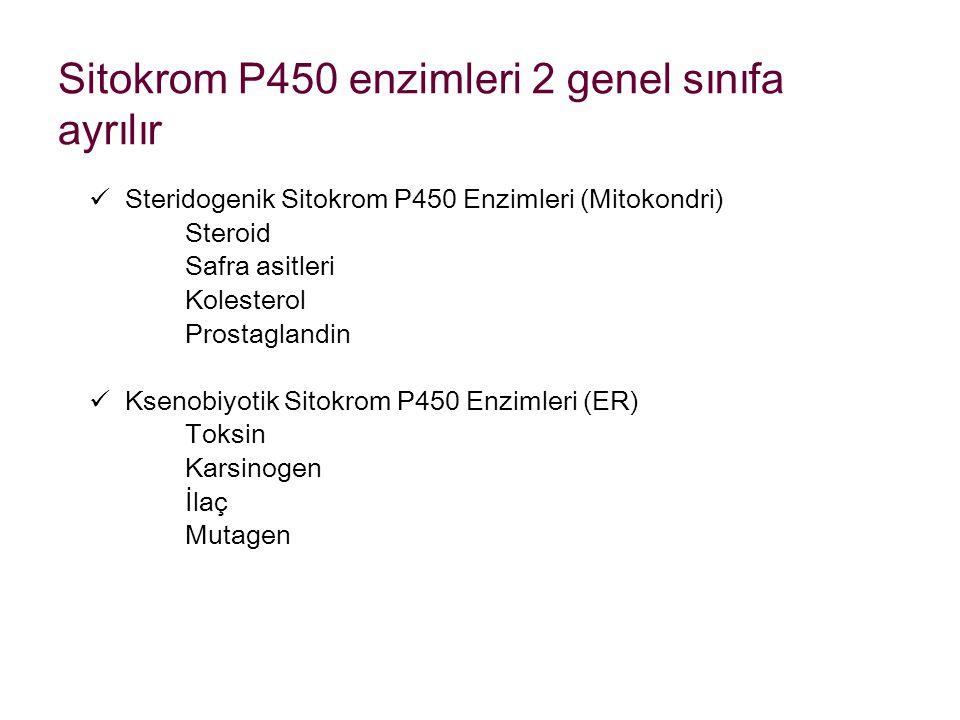 Sitokrom P450 enzimleri 2 genel sınıfa ayrılır Steridogenik Sitokrom P450 Enzimleri (Mitokondri) Steroid Safra asitleri Kolesterol Prostaglandin Kseno