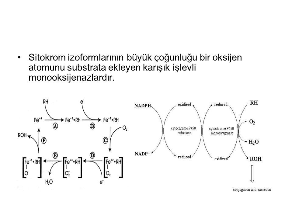 Sitokrom izoformlarının büyük çoğunluğu bir oksijen atomunu substrata ekleyen karışık işlevli monooksijenazlardır.