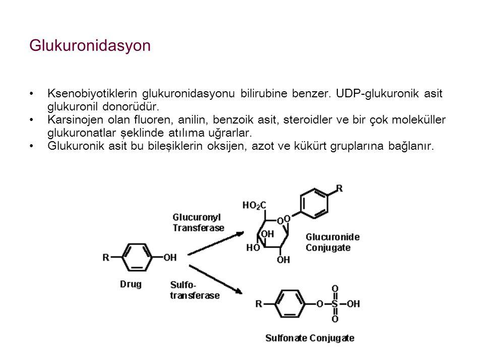 Glukuronidasyon Ksenobiyotiklerin glukuronidasyonu bilirubine benzer. UDP-glukuronik asit glukuronil donorüdür. Karsinojen olan fluoren, anilin, benzo