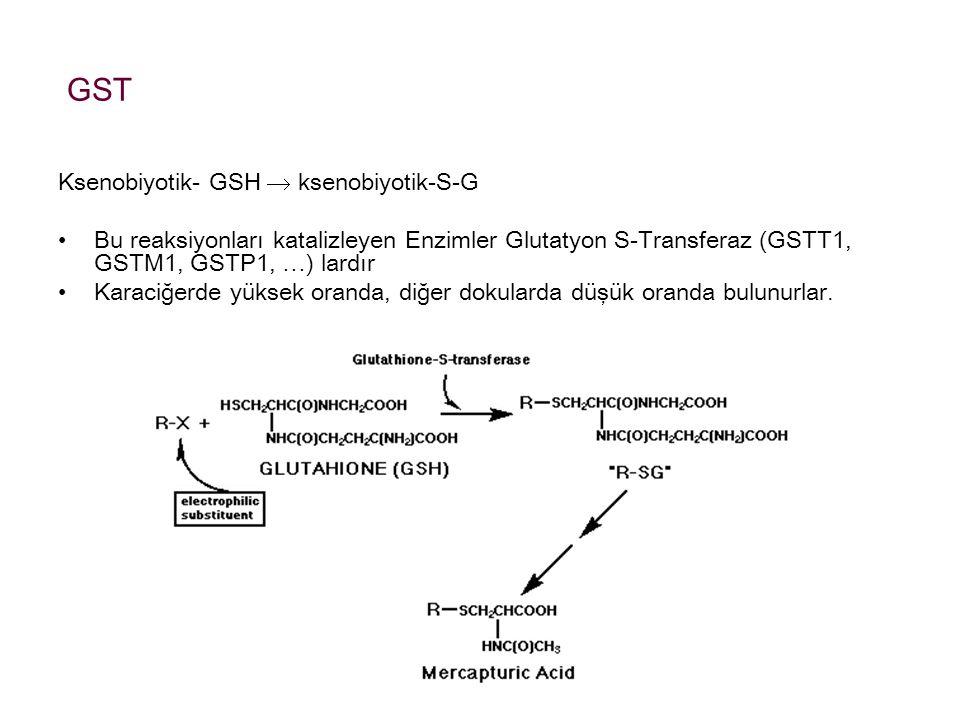 GST Ksenobiyotik- GSH  ksenobiyotik-S-G Bu reaksiyonları katalizleyen Enzimler Glutatyon S-Transferaz (GSTT1, GSTM1, GSTP1, …) lardır Karaciğerde yük