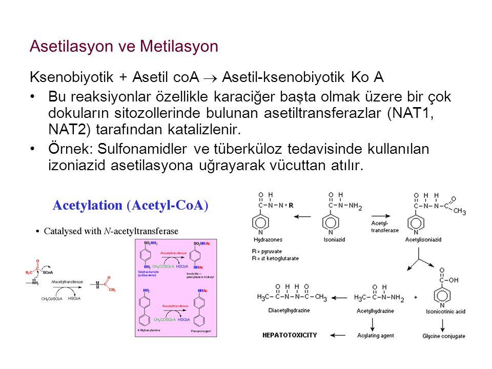 Asetilasyon ve Metilasyon Ksenobiyotik + Asetil coA  Asetil-ksenobiyotik Ko A Bu reaksiyonlar özellikle karaciğer başta olmak üzere bir çok dokuların