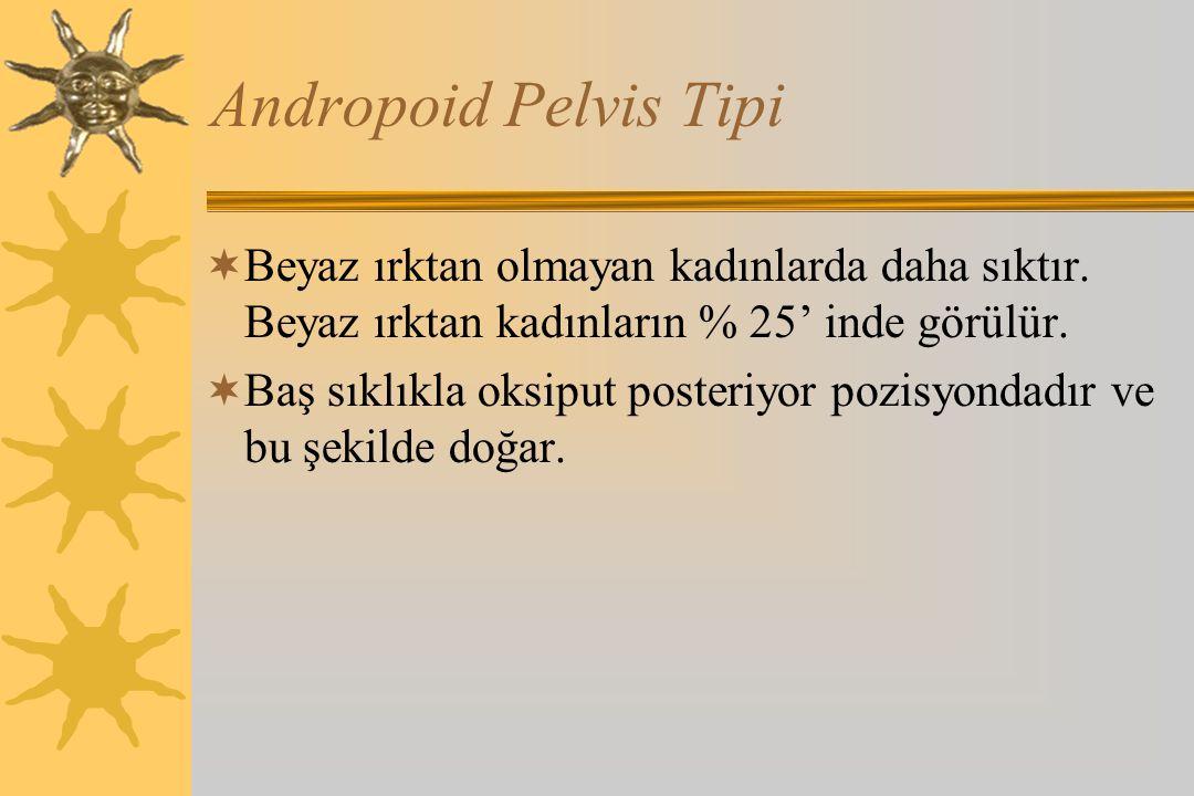 Andropoid Pelvis Tipi  Beyaz ırktan olmayan kadınlarda daha sıktır. Beyaz ırktan kadınların % 25' inde görülür.  Baş sıklıkla oksiput posteriyor poz