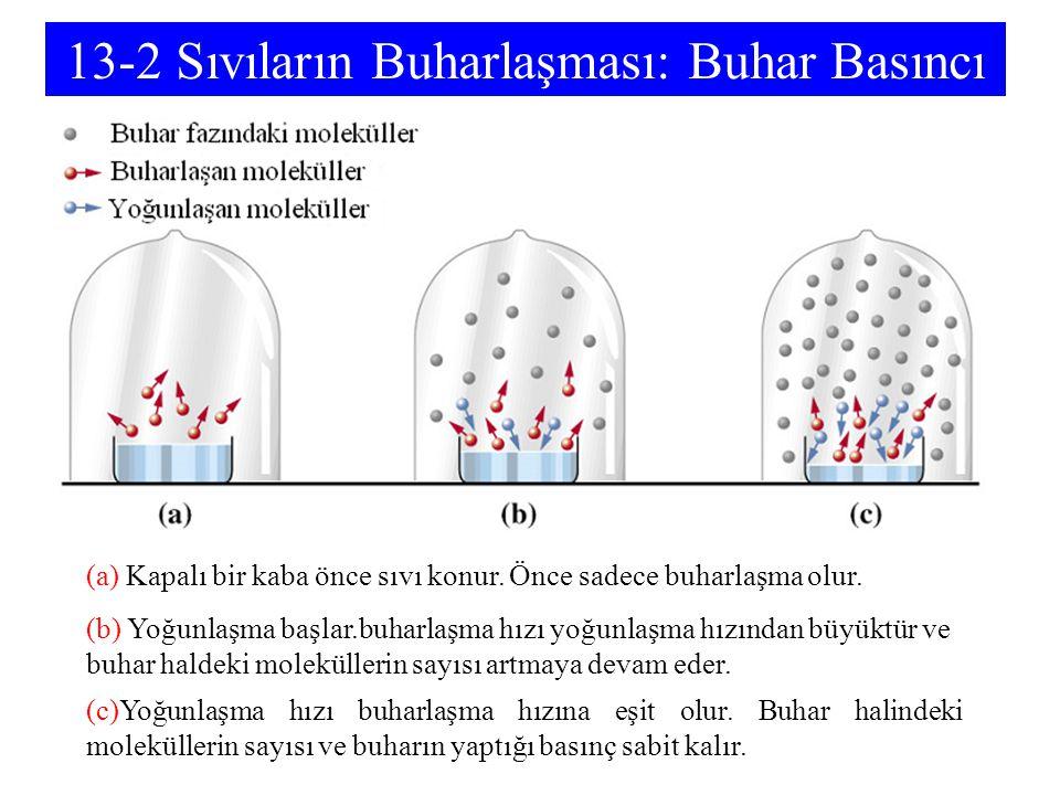 13-2 Sıvıların Buharlaşması: Buhar Basıncı (a) Kapalı bir kaba önce sıvı konur. Önce sadece buharlaşma olur. (b) Yoğunlaşma başlar.buharlaşma hızı yoğ