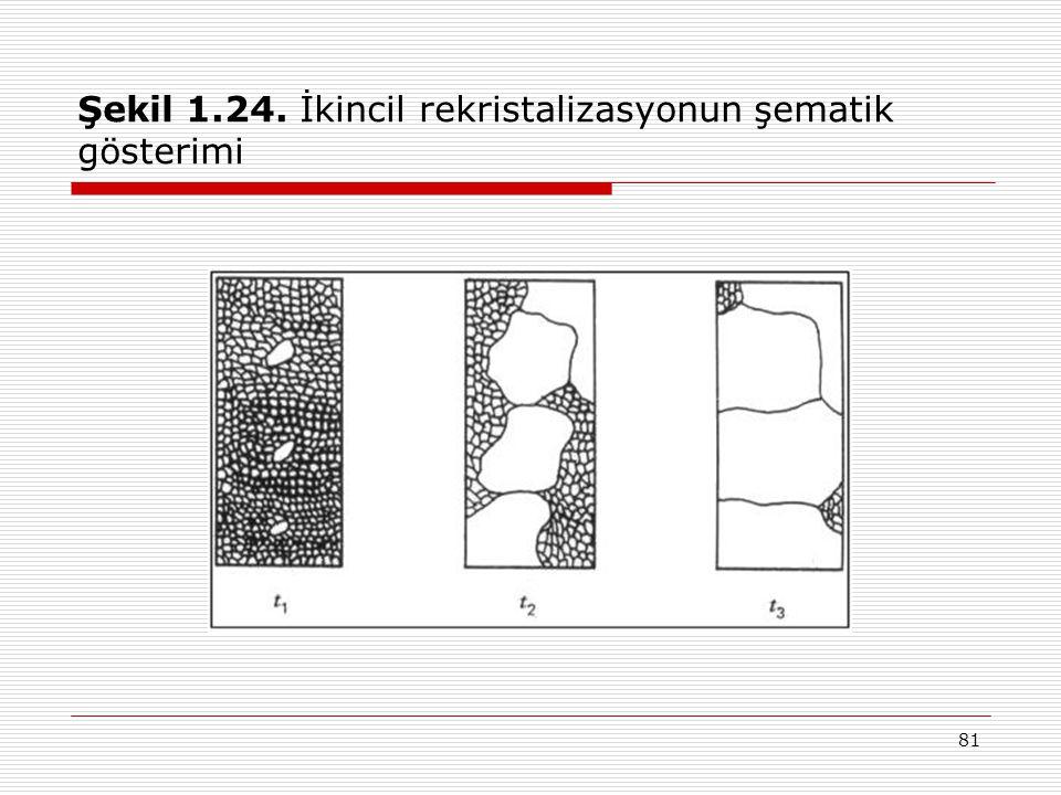 81 Şekil 1.24. İkincil rekristalizasyonun şematik gösterimi