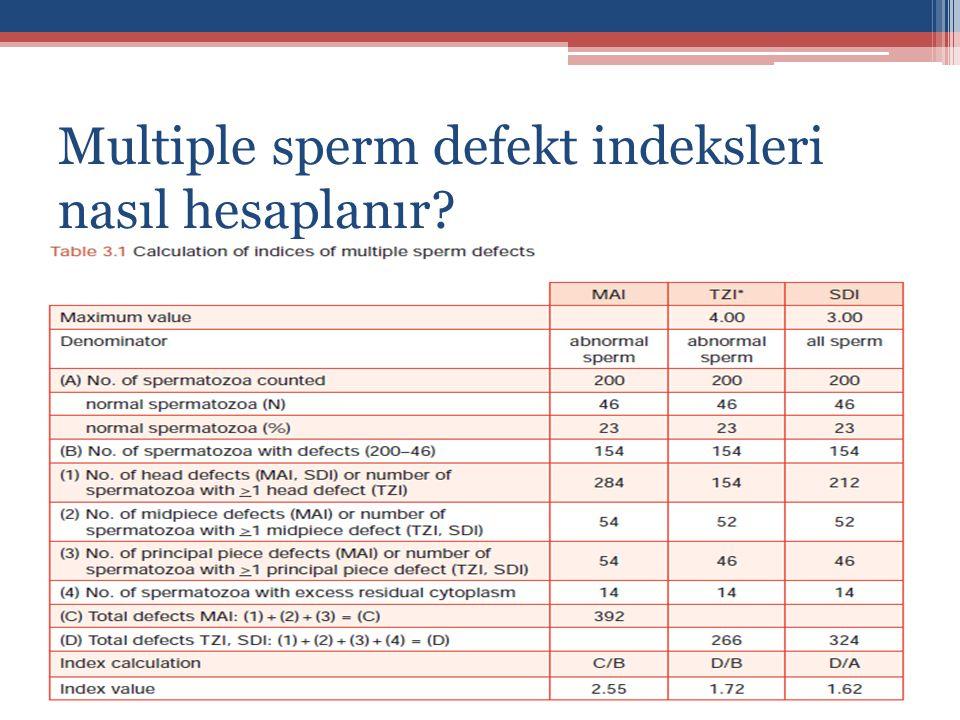 Multiple sperm defekt indeksleri nasıl hesaplanır?