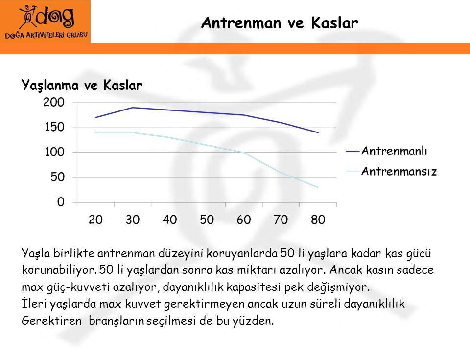 Antrenman ve Kaslar Yaşlanma ve Kaslar Yaşla birlikte antrenman düzeyini koruyanlarda 50 li yaşlara kadar kas gücü korunabiliyor. 50 li yaşlardan sonr