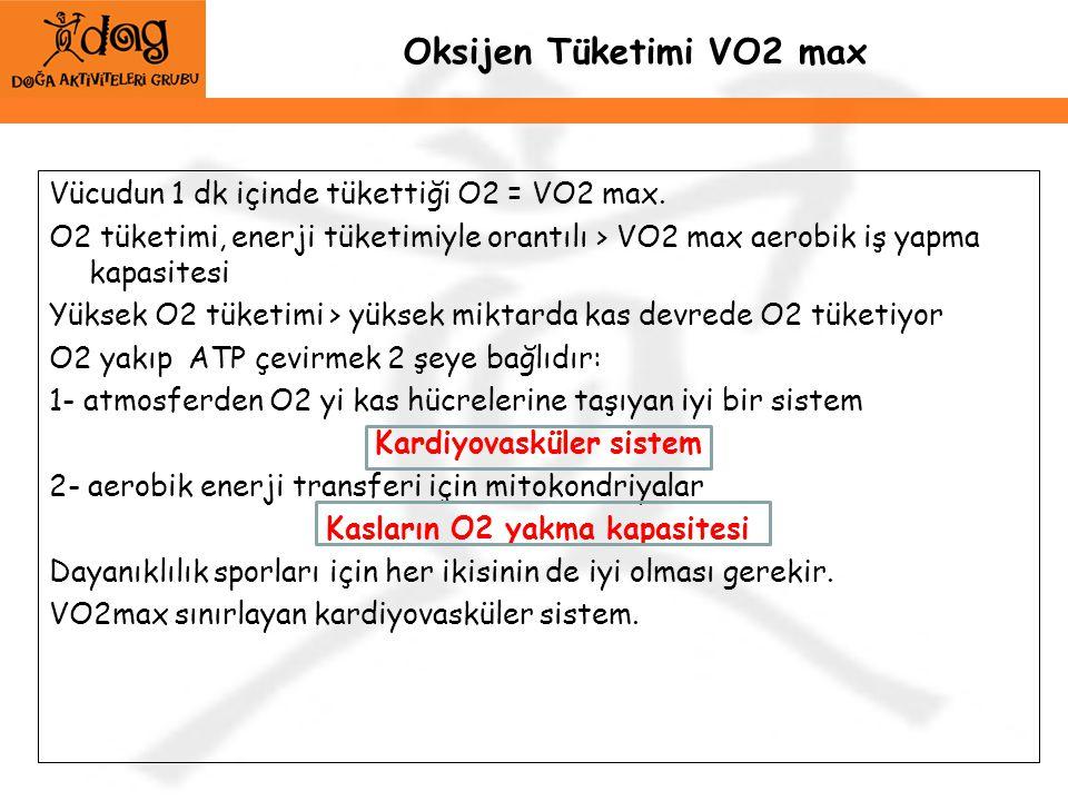 Oksijen Tüketimi VO2 max Vücudun 1 dk içinde tükettiği O2 = VO2 max. O2 tüketimi, enerji tüketimiyle orantılı > VO2 max aerobik iş yapma kapasitesi Yü
