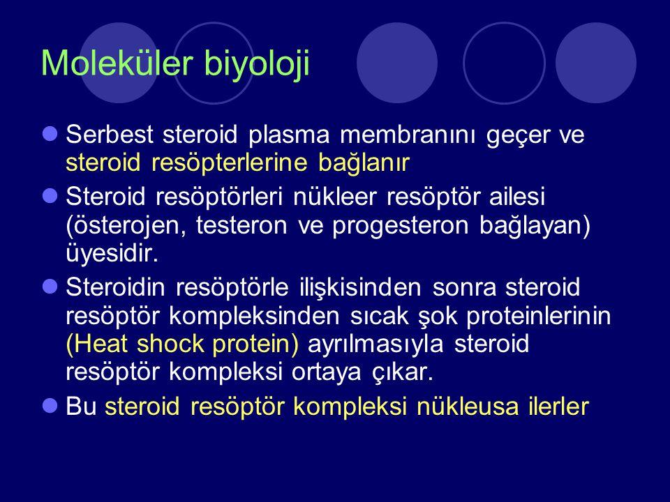 Moleküler biyoloji Serbest steroid plasma membranını geçer ve steroid resöpterlerine bağlanır Steroid resöptörleri nükleer resöptör ailesi (österojen,