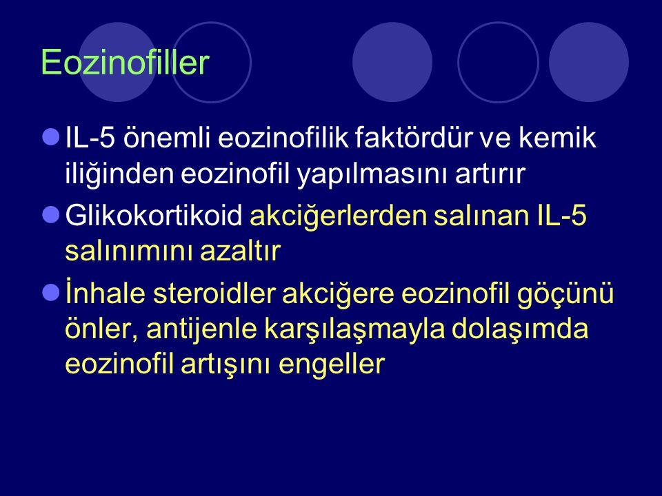 Eozinofiller IL-5 önemli eozinofilik faktördür ve kemik iliğinden eozinofil yapılmasını artırır Glikokortikoid akciğerlerden salınan IL-5 salınımını a