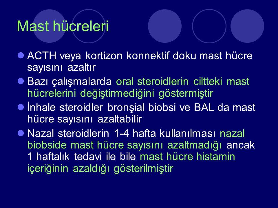 Mast hücreleri ACTH veya kortizon konnektif doku mast hücre sayısını azaltır Bazı çalışmalarda oral steroidlerin ciltteki mast hücrelerini değiştirmed