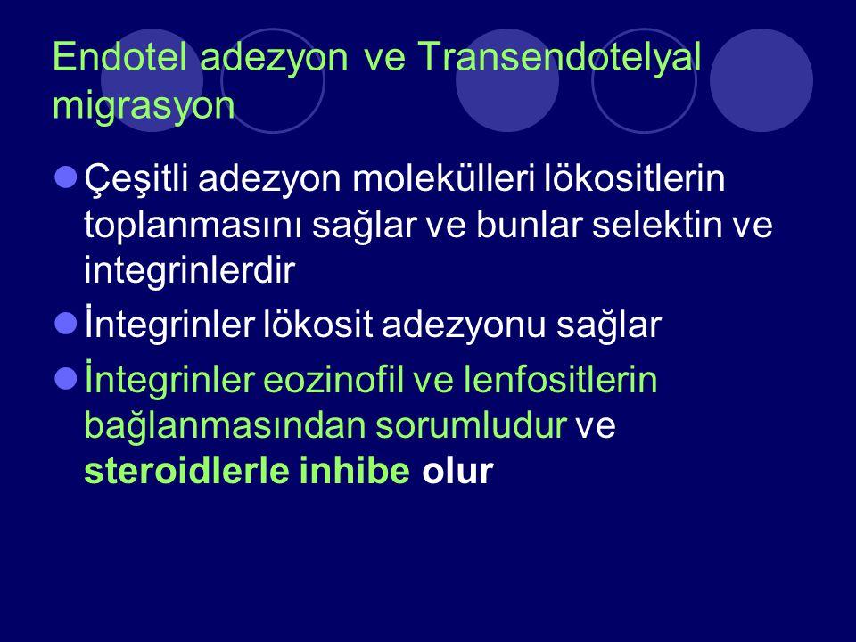 Endotel adezyon ve Transendotelyal migrasyon Çeşitli adezyon molekülleri lökositlerin toplanmasını sağlar ve bunlar selektin ve integrinlerdir İntegri